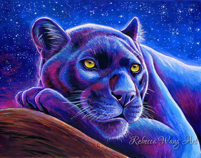 Stargazing - Colorful Black Leopard