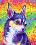 Rainbow Chihuahua Portrait - Bruce