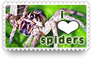 I Heart Spiders Stamp by barefootphotos