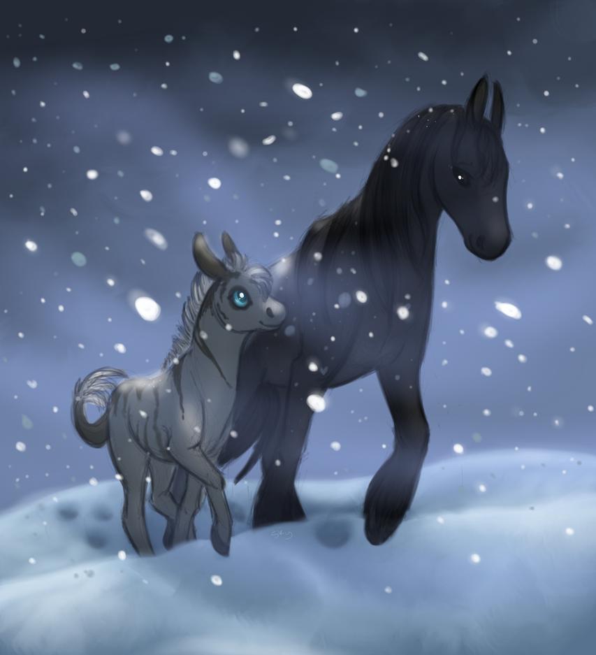 Winter March by Svantanon