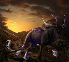 The Wanderer by Svantanon