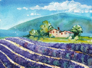 Sunny day in Provence