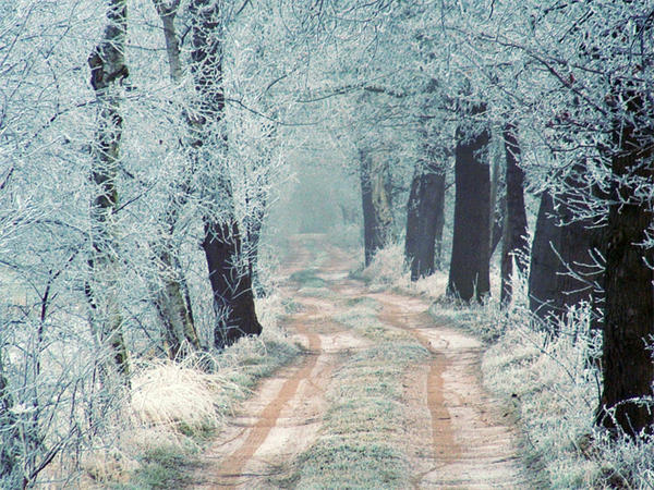 Нет ничего прекраснее зимним днем, как снег, искрящийся на солнышке.