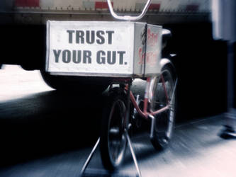 Trust Your Gut by j-pitts
