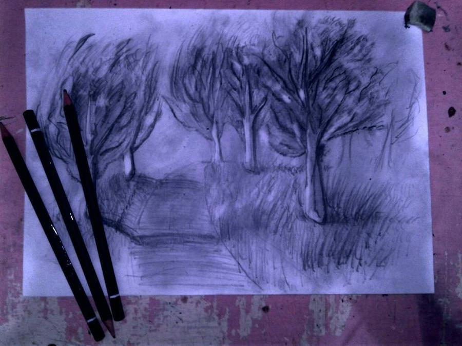 Trees by Suzi3r