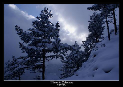 Winter in Zakopane