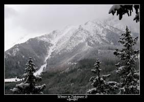 Winter in Zakopane 3