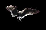 Wings Png Precut 1
