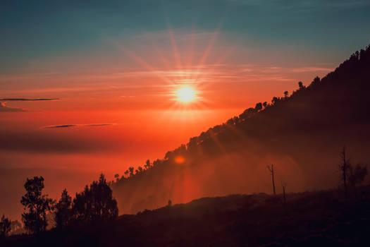 Lovely Sunrises