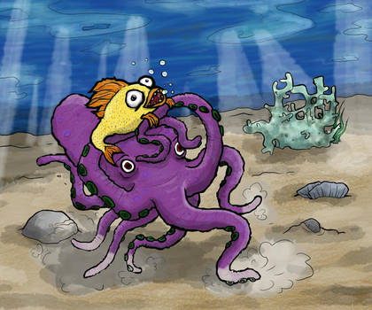 Octocruise
