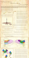 A Guide to Fantasy Fliers and Feathered Wings