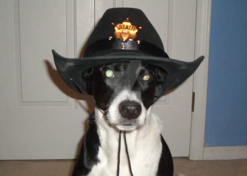 One Tough Pup