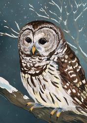 Wide Eyes in the Snowy Night