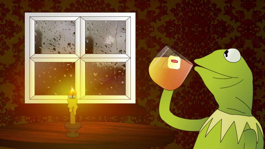 Kermit sips tea, minds own business