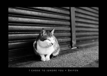 I Chose To Ignore You