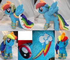 Rainbow Dash Ready for the Gala by Cryptic-Enigma