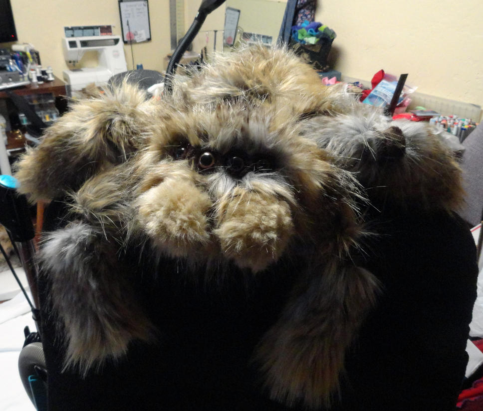 Plush Fuzzy Spiders Www Topsimages Com