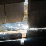 Into the light by MatsHolmberg