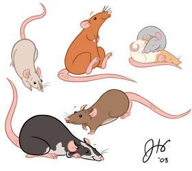 Aw, Rats.