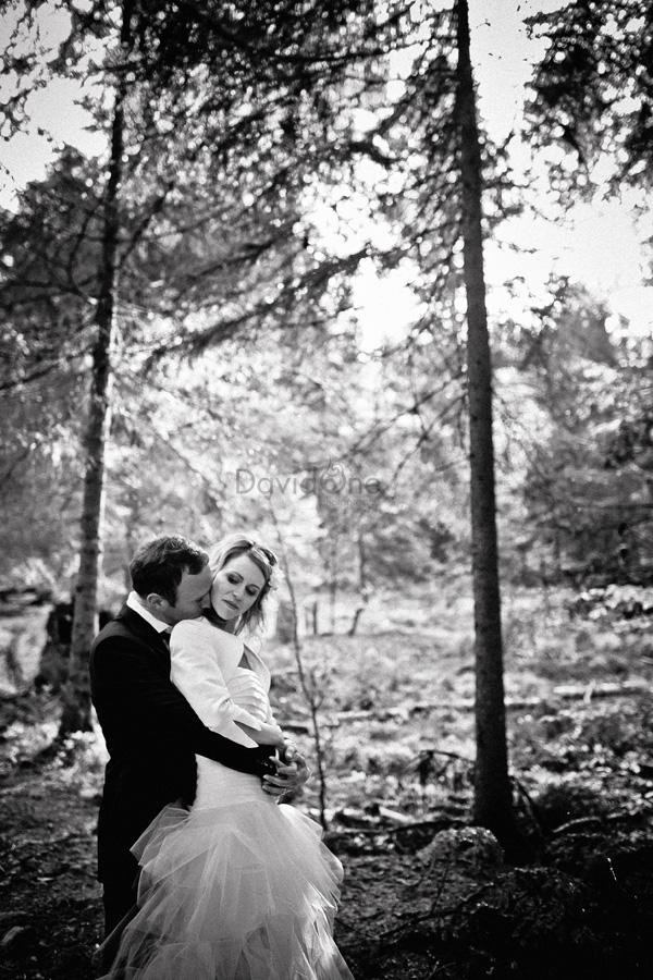 Wedding II by Davidone33