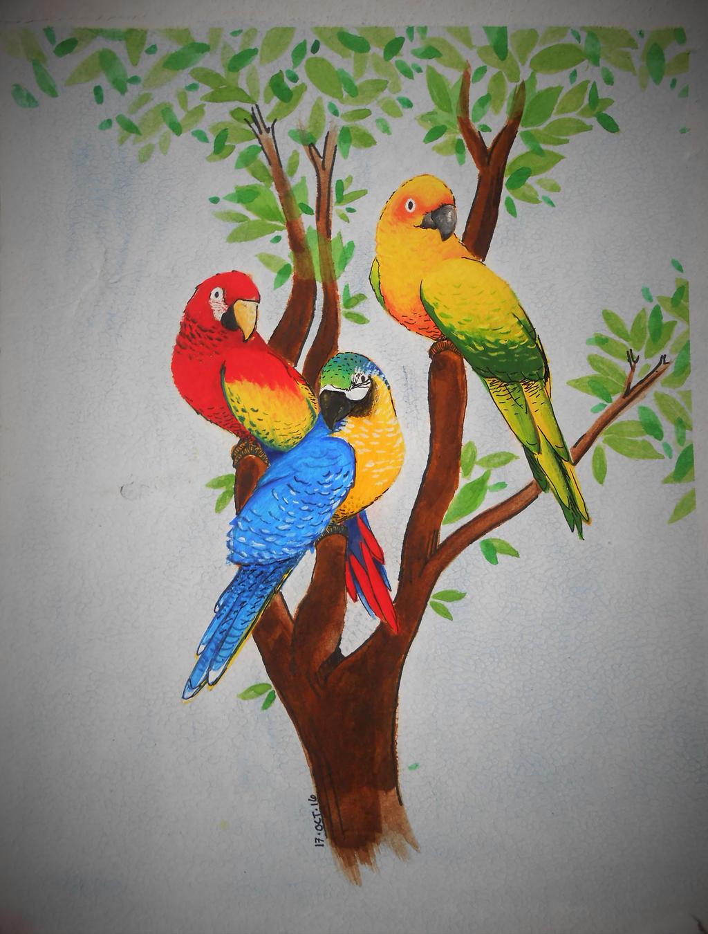 Birds by WilliamDreyfus