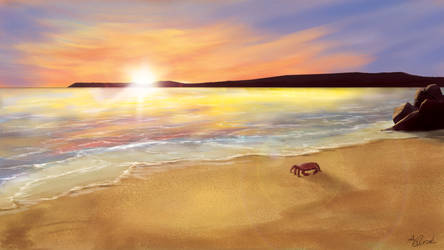 Ocean with a Sunset Landscape by zatende