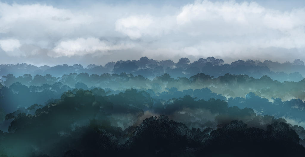 Foggy Forest by zatende
