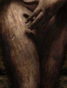 Wood Woman