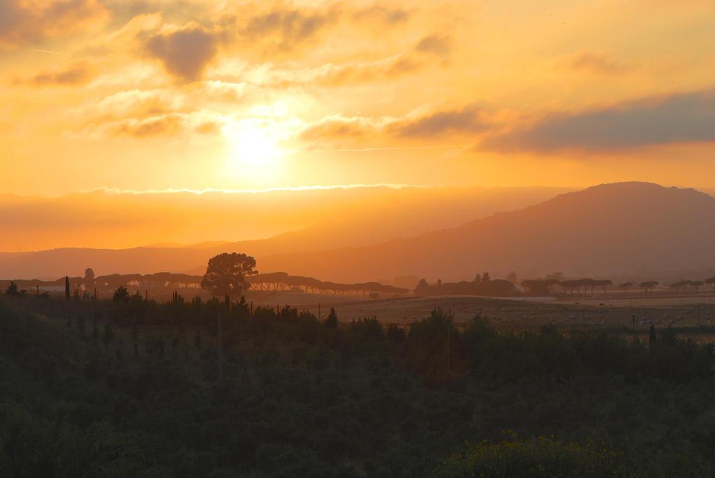Sunset by calikal