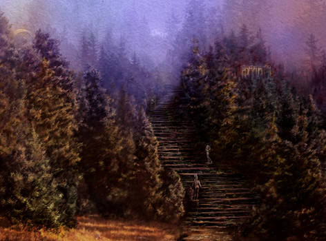 Path into the woods