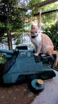 New Tank Destroyer/bed for Cat (self made) by Satanoy