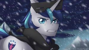 Snowy Armor