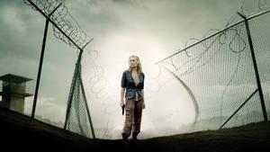 The Walking Dead: Andrea fan poster