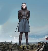Arya's Siege