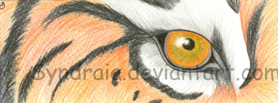 Tiger bookmark 12