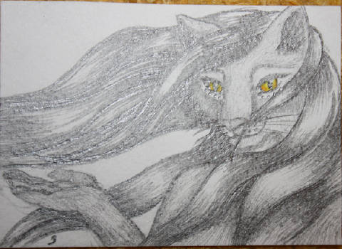 ACEO for alicewhites