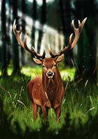 COMMISSION - Deer into the woods by DianaGatto