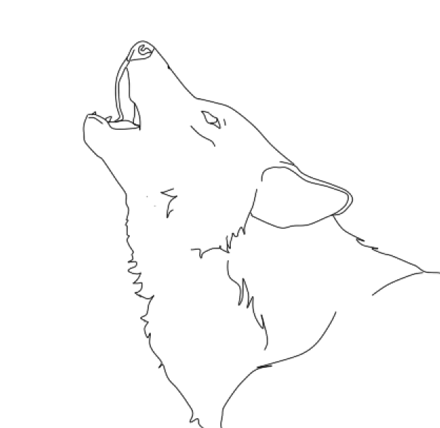 Line Drawing Wolf : Wolves howling drawings sketch coloring page