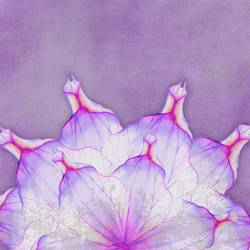 Floral SB Paper 03 by CntryGurl-Designs