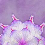 Floral SB Paper 03