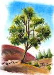 Oil Pastel Study 02