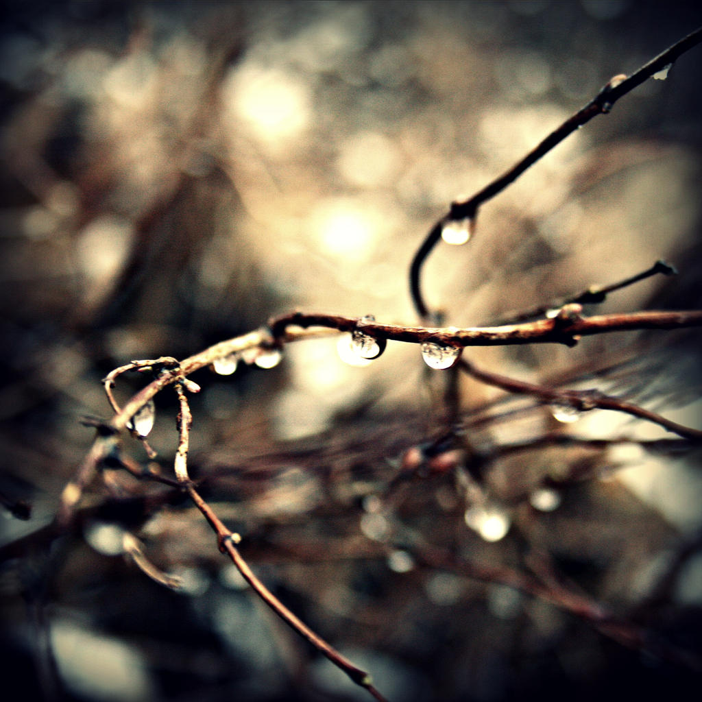 Winter Tears II by CanisLupusMoon