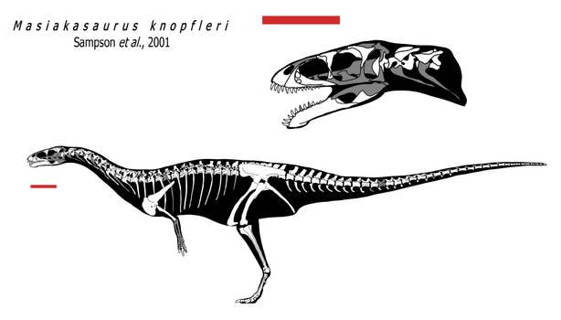 Masiakasaurus knopfleri skeleton