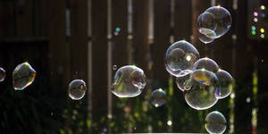 Bubbles 4450