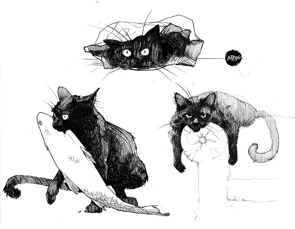 how to draw bacl of cat