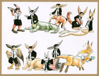 Celia's Bunny Variations