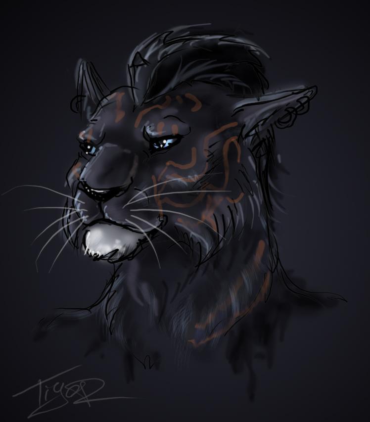 SKYRIM: Dragonborn Khajiit by Ti-R