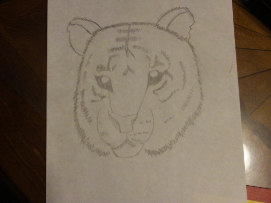 Tiger Face by AbyssinalPhantom