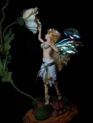 'Una' fairy 73 by AmandaKathryn