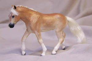 halflinger pony commission by AmandaKathryn